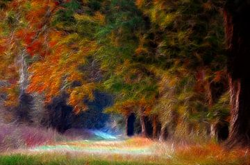 Bäume im Herbst van Lars Tuchel