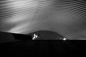 Luikse spoorwegstation van Marius Mergelsberg