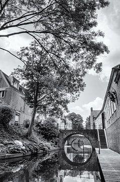 Den Bosch brug van Tanja de Boer