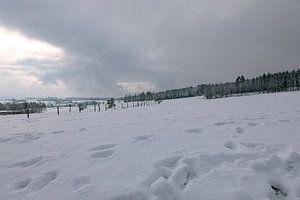 Eindelijk winter met veel sneeuw van Harald Schottner