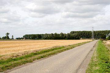 Weg naar Nederland von Olivier Van Acker