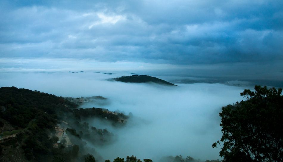 Zee van mist