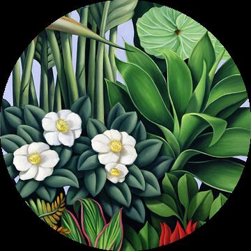 Foliage II van Catherine Abel