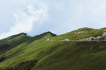 Hehuanshan, grüner Berg in der Mitte der Insel Taiwan von Michiel Dros