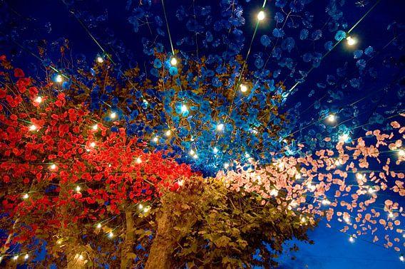 Kleurrijke Dorpsfeest van Don Amaro