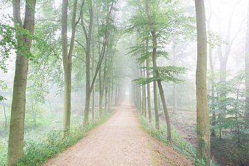 Mist in het bos von Ab Donker