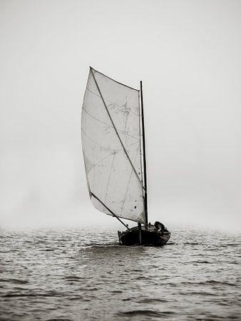 Through the fog von Oscar van Crimpen