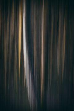 abstract bos van natascha verbij