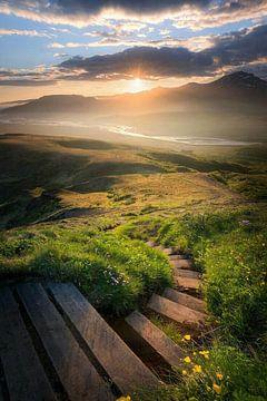 Een trap door de duinen van Wilma Prins