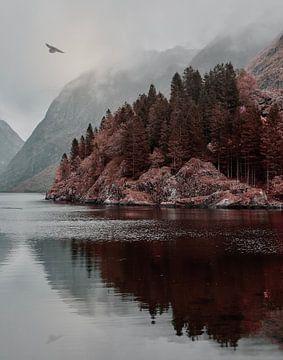 Odins Rabe fliegt über den Nærøfjord von Anam Nàdar