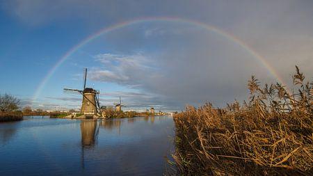 Regenboog boven Kinderdijk