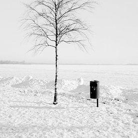 Winter, Baum und Meer von Heiko Westphalen