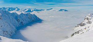 Allgäu Alps van
