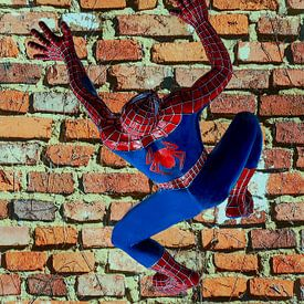 Figures et formes - Spiderman sur Christine Nöhmeier