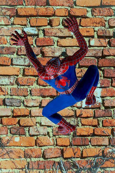 Figuren en vormen - Spiderman van Christine Nöhmeier