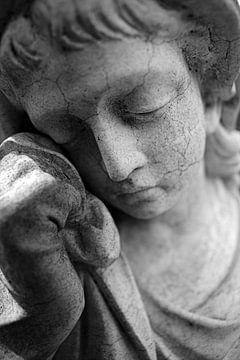 Verdriet en rouw van
