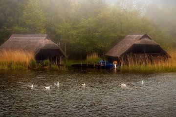 foggy day van Bernd Hoyen