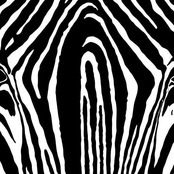 Zebra Muster von Patricia Piotrak