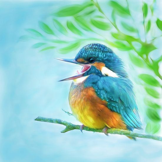 cute kingfisher van Silvio Schoisswohl