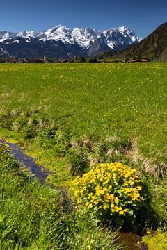 Blick von Farchant zur Zugspitze von Andreas Müller