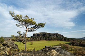 """Elbsandsteingebergte - Uitzicht vanaf de berg """"Quirl"""". van Ralf Lehmann"""