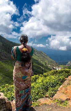 Teepflückerin in Sri Lanka von Corrie Ruijer
