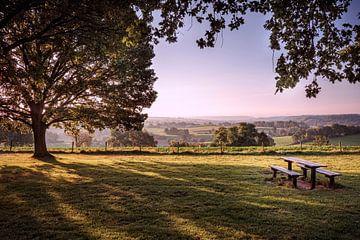 Picknickplaats Walem van Rob Boon