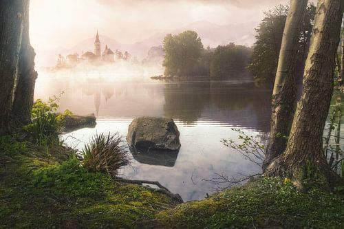 Dawn in the mist