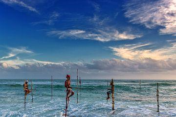 Paalvissers Sri Lanka van Richard van der Woude