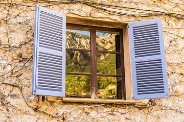 Volets de fenêtre et fond de mur méditerranéens sur Alex Winter