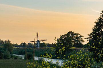 de molen van Waardenburg van Tania Perneel