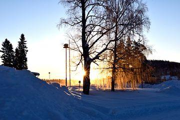 Coucher de soleil sur Christer Andersson