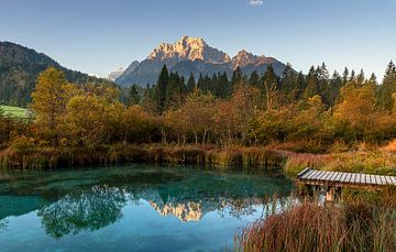 Zelenci Meer in Slovenië
