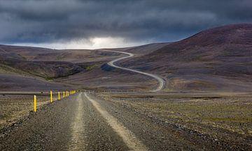Straße zur Sonne von Steven Driesen