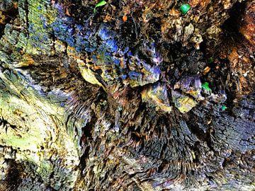 Fotografisch detail van een omgehakte boom van Ton Kuijpers