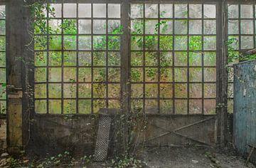 Le Jardin sauvage Fototapete von Olivier Van Cauwelaert