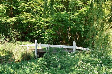 Brücke in Grün von Merel Pape Photography