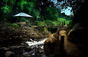 Balinese Rivier.... von Wim Schuurmans