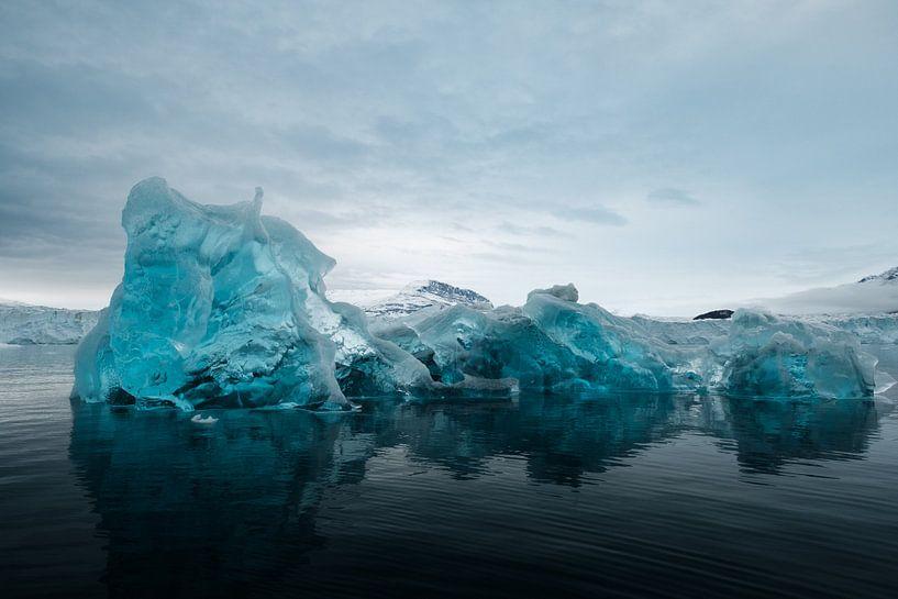 Blue Ice van Rudy De Maeyer