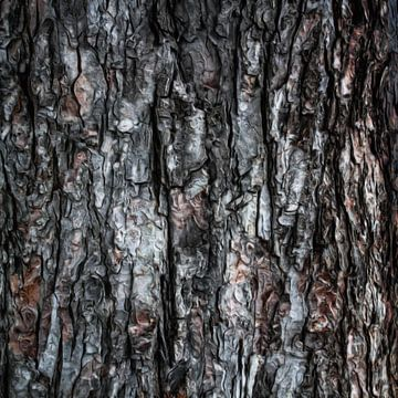 Abstract boomschors IX van Maurice Dawson