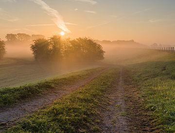 Dijklandschap op een mistige ochtend van Michel Knikker
