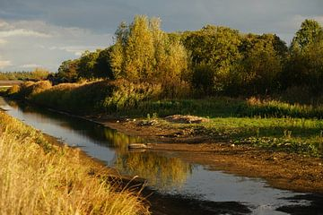 De Bielheimerbeek staat droog van Jan Nuboer