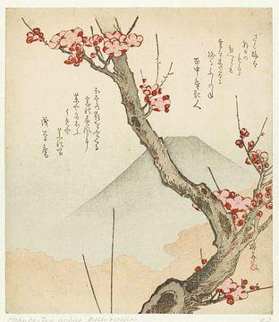Mount Fuji and a Blossoming Plum, Teisai Hokuba, c. 1825