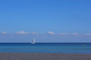 sail away van Marieke Treffers