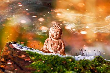 Boeddha in het licht van Emotion-Art :-)