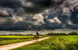 Paardrijden op t Friese platteland