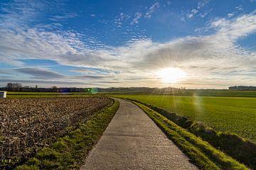 Folgen Sie der Straße von Johan Lissens