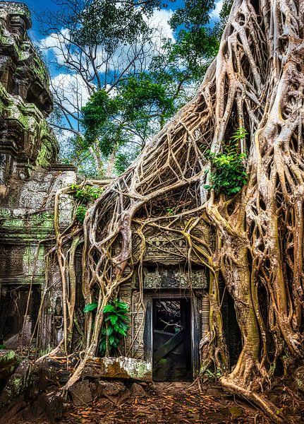 Tomb raider, Ta Prohm tempel, Cambodja van Rietje Bulthuis