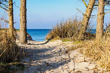 Landscape on the Baltic Sea coast van Rico Ködder