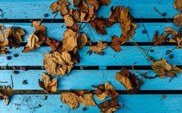 herfstbladeren op een blauwe bank van Bert Bouwmeester